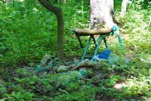 Co do lesa nepatří DSC_0019